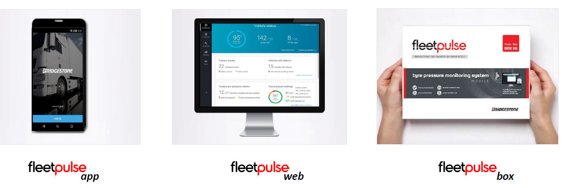 Fleetpulse ok