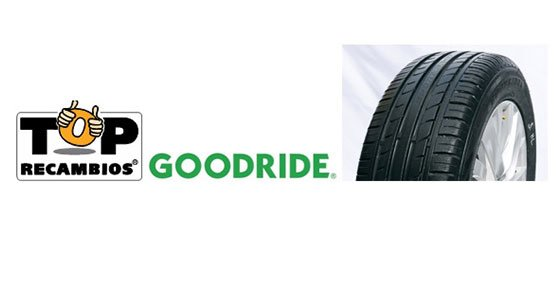 Top recambios distribuir en exclusiva goodride for Top recambios alzira
